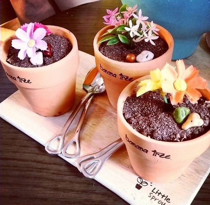 冰淇淋用简单可爱的花盆形状的器皿装上饼干